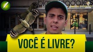 Você é Livre? (Poesia) - Fabio Brazza