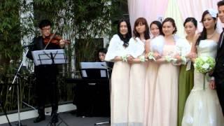 Serenade Music (wedding performance) - Perherps love