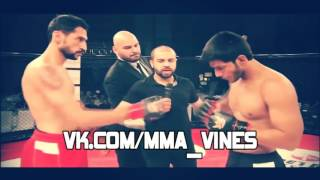 MMA_VINES ( by Vital )#121