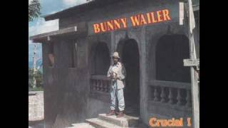 Bunny Wailer - Power Strugglers