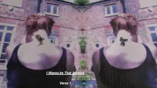 I Wanna Be That Jaybird (lyrics)