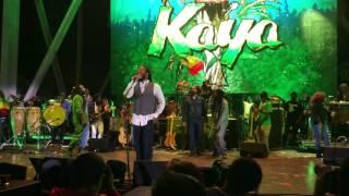 """Kaya"" - the Bob Marley Brothers Kaya Fest 2017 - Ziggy, Stephen, Damian, Julian, Ky-mani"