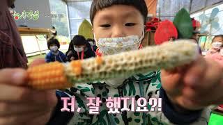 [新농사직설 30회] 어린이집추수체험 다시보기