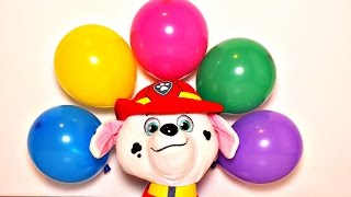 Learn Color Balloons Finger Nursery Rhymes  Collection w/ Paw Patrol - Balloon Popping Show Babies