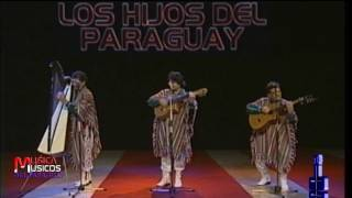 LOS HIJOS DEL PARAGUAY   CASCADA DE DIGNO GARCIA