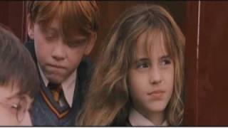 Harry Potter Season 1(Friends Opening)