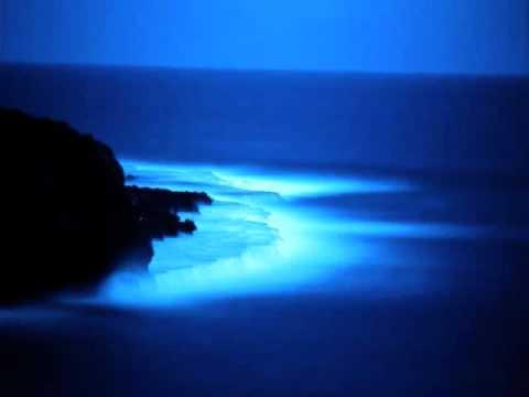 Azul de Kermit Blanca Letra y Video