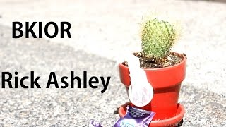 Always Gonna Go In Dry (Never gonna give you up- Rick Ashley Parody)(BKIOR Original)