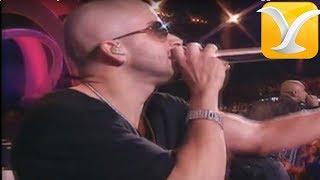 Wisin y Yandel - Mayor Que Yo - Festival de Viña del Mar 2008, Reggaeton