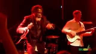 Don Carlos & Dub Vision Band - Mr Sun