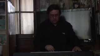 Je ne vis que pour toi  chanson (version instrumentale) Serge d'Alessio