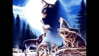 Tribute To Wolves