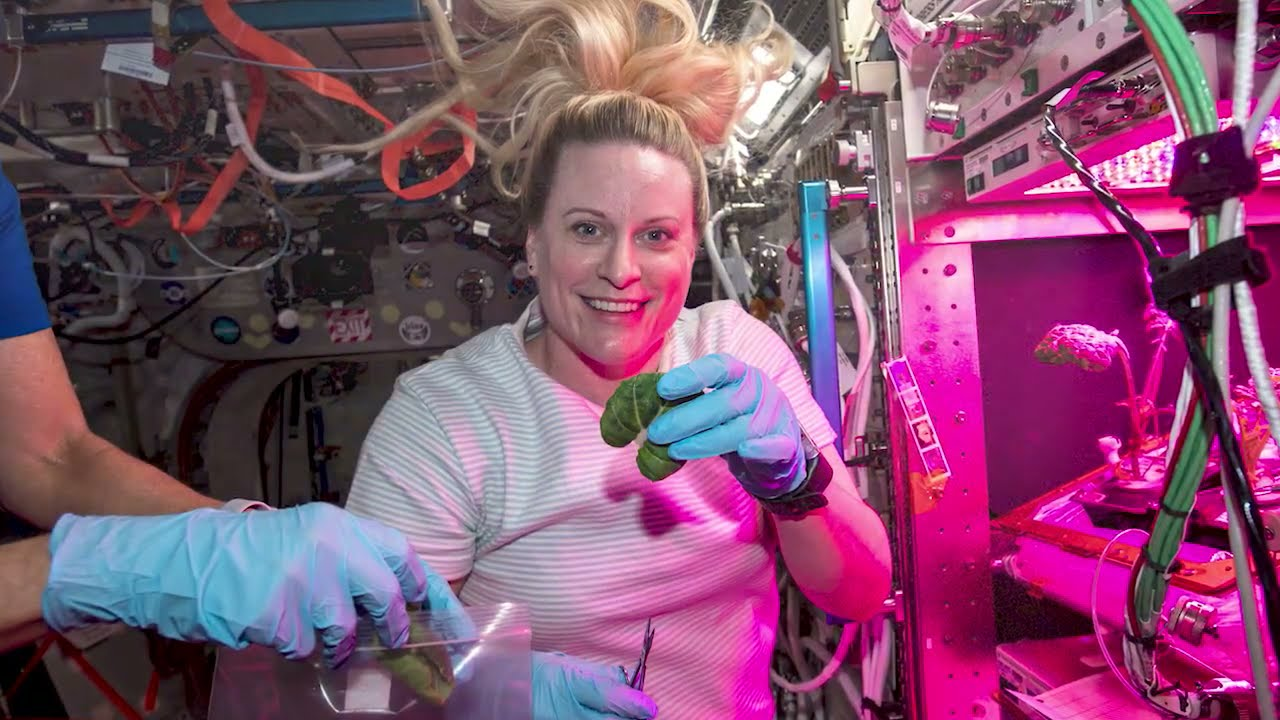 Kate Rubins – NASA Scientist in Space – #Science