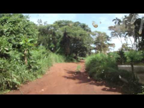 Road from Juba to Yei in South Sudan Africa 8