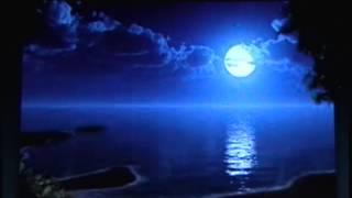 Que hermosa noche - con letra - Leo Dan cover de AvidMario