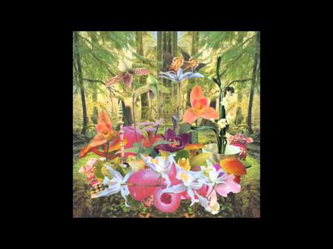 monster-rally-orchids-electronic-gems