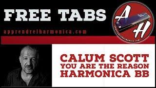 Calum Scott – You Are the Reason – Harmonica Bb
