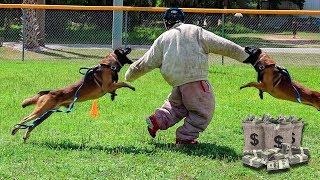 Last To Die Wins $1,000,000!!! (Insane Police Dog Chase Challenge)