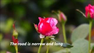 Woman In Love -  Barbra Streisand , Roses5