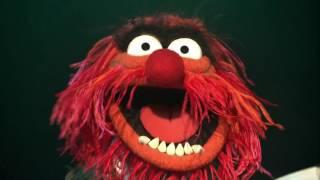 Muppet Show - Bohemian Rhapsody - Mama - Hilarious Animal!!! (Full HD)