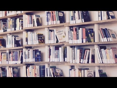 13 Books You Might Like