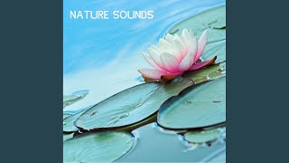 Thunderstorm Sound - Thunder Sound Effect Healing Energy with relaxation Tone
