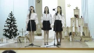 Galbenă gutuie, Concert de colinde, 2013