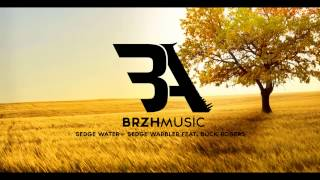 Sedge Water - Sedge Warbler feat. Buck Rogers | BrzhMusic