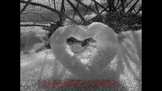 Franco Battiato ♥ Inverno