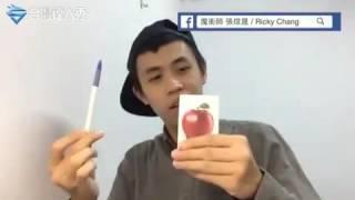 Ppap ( pineaple pen apel pen )