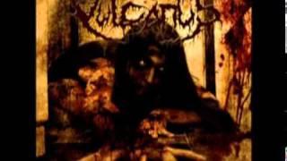 Pure Devastation promo video