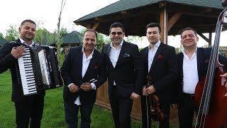 Taraful Stelu Pandelescu - Anii de copilarie (Oficial Audio)