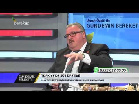 Gündemin Bereketi Programı Türkiye'de Süt Üretimi
