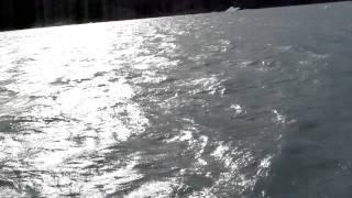 Lago Argentino   barulho do vento