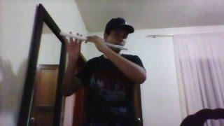Tu Me Cambiaste La Vida - Flauta Traversa