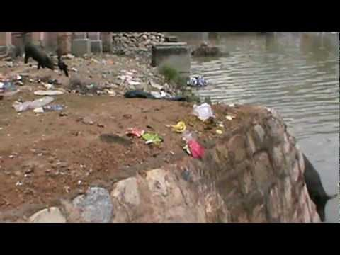 "How a river is being polluted……..""Poor Ganges"""