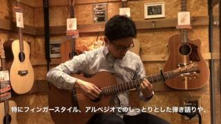 Cole Clark コールクラーク / Angel Series CCAN2EC RDM Redwood Top with Mahogany Back and Sides【イシバシ楽器】