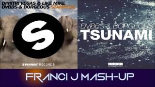 Dimitri Vegas & Like Mike vs DVBBS & BORGEUS - STAMPEDE vs TSUNAMI (Franci J Mash-Up)