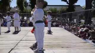 Ponga le pingouin judoka Raphaël fête des écoles