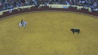 """""""Manuel Lupi"""", o pasodoble - Estreia - Banda do Samouco no Campo Pequeno  14 Maio 2009"""