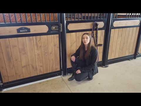 Horse Stall Night Latch demo
