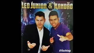 João Boiadeiro - Leo Junior e Xandão