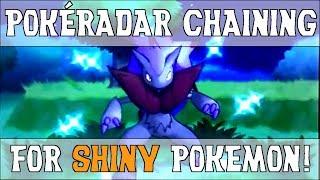 PokéRadar Chaining for Easy Shinies! - Shiny Hunting Guide - Pokemon X and Y
