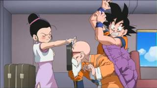 Master Roshi Wants to Pafu Pafu Chi Chi's Breasts width=