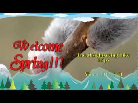 Video 2012-1-41 Welcome Spring!Willkommen Fruhling!Benvenuti Primavera!Bienvenue Printemps!