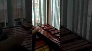 Despacito de Luis Fonsi en Marimba