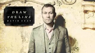 David Gray - Fugitive (Official Audio)