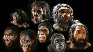 Michio Kaku - Origin of the Universe & Origins of Humanity