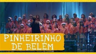 Pinheirinho de Belém - Palavra Cantada