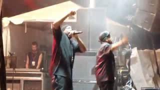 Ice Cube - Check Yo' Self (Live at Amnesia Rockfest)
